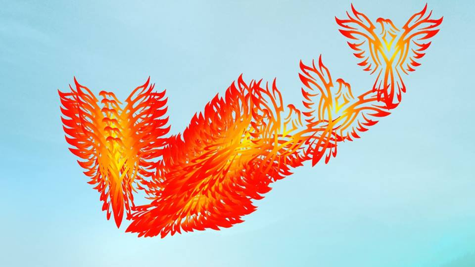 PhoenixRising4